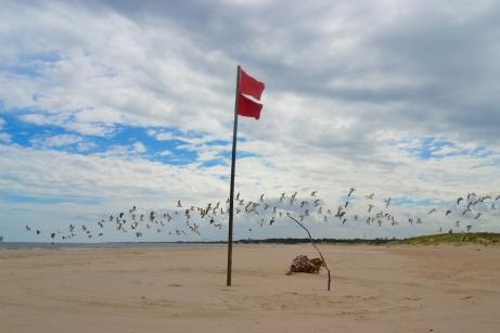 Playa Río de la Plata