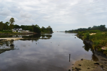 Arroyo Pando