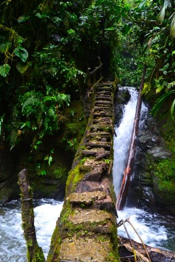 Santuario de cascadas
