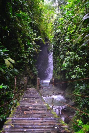 Santuario de cascadas, Mindo