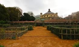 Companys Garden