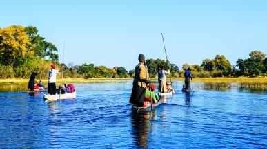 Delta de Okavango (18)