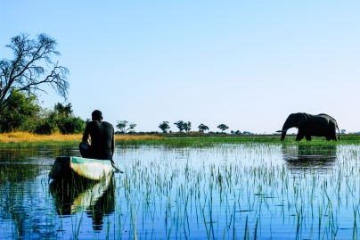 Delta de Okavango (2)
