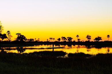 Delta de Okavango (3)