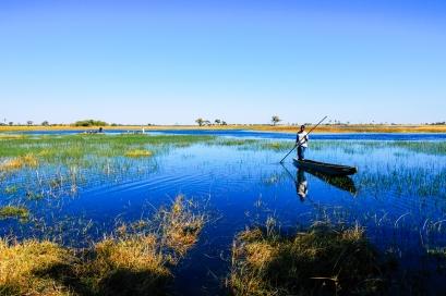 Delta de Okavango (52)