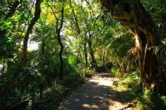 Cataratas Victoria (3)