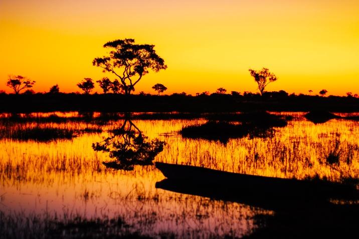 Delta de Okavango (15)