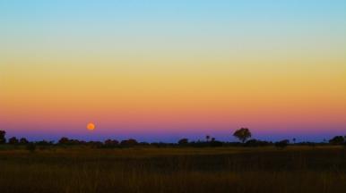 Delta de Okavango (17)