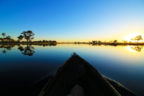 Delta de Okavango (22)