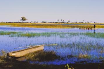 Delta de Okavango (30)